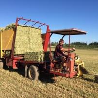 Summer farming.